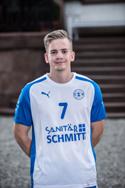 schmidt_web